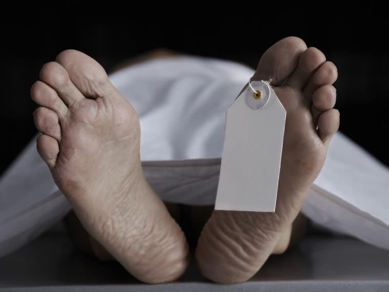 ¿Cuánto tiempo tarda un cuerpo en descomponerse?